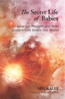 Secret Life of Babies, The: How Our Prebirth and Birth Experiences Shape Our World [Paperback]