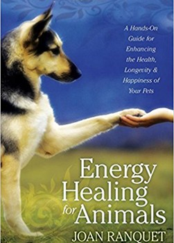 Energy Healing for Animals: A Hands-On Guide for Enhancing the Health, Longevity, and Happiness of Your Pets [Paperback]