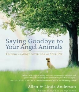 Saying Goodbye to Your Angel Animals: Finding Comfort after Losing Your Pet