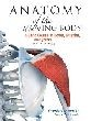 Anatomy of the Moving Body, Second Edition: A Basic Course in Bones, Muscles, and Joints