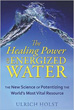 Healing Power of Energized Water, The: The New Science of Potentizing the World's Most Vital Resource [Paperback]