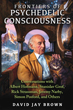 Frontiers of Psychedelic Consciousness: Conversations with Albert Hofmann, Stanislav Grof, Rick Strassman, Jeremy Narby, Simon Posford, and Others [Paperback]