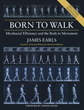 Born to Walk, Second Edition: Myofascial Efficiency and the Body in Movement [Paperback]