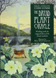 Druid Plant Oracle: Working with the Magical Flora of the Druid Tradition [Paperback]