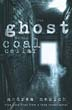 Ghost in the Coal Cellar, The: True Case Files from a Lone Investigator [Paperback]