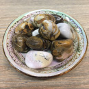 Tumbled Stone (Spotted Agate) 1 LB Bag