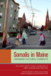 Somalis in Maine: Crossing Cultural Currents (Io Series)
