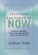 Practicing the Power of Now: Essential Teachings, Meditations, and Exercises From The Power of Now [Hardcover][DMGD]