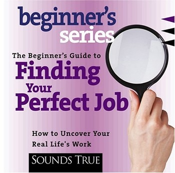 Beginner's Guide to Finding Your Perfect Job, The - CD