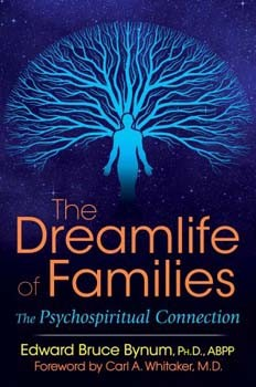 Dreamlife of Families, The: The Psychospiritual Connection [Paperback]