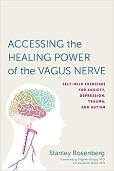 Accessing the Healing Power of the Vagus Nerve: Self-Help Exercises for Anxiety, Depression, Trauma, and Autism [Paperback]