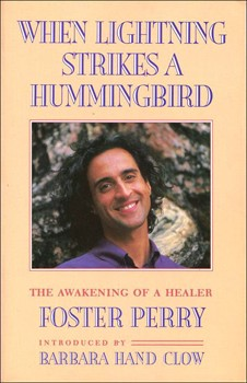 When Lightning Strikes a Hummingbird: The Awakening of a Healer [Paperback]