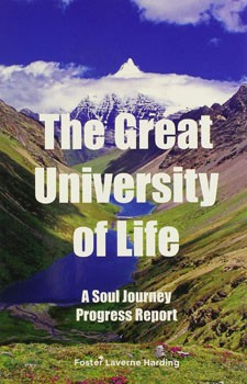 Great University of Life, The: A Soul Journey Progress Report [Paperback] (DMGD)