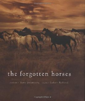 The Forgotten Horses - Hardcover (DMGD)
